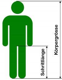 Schrittlänge und Körpergrösse